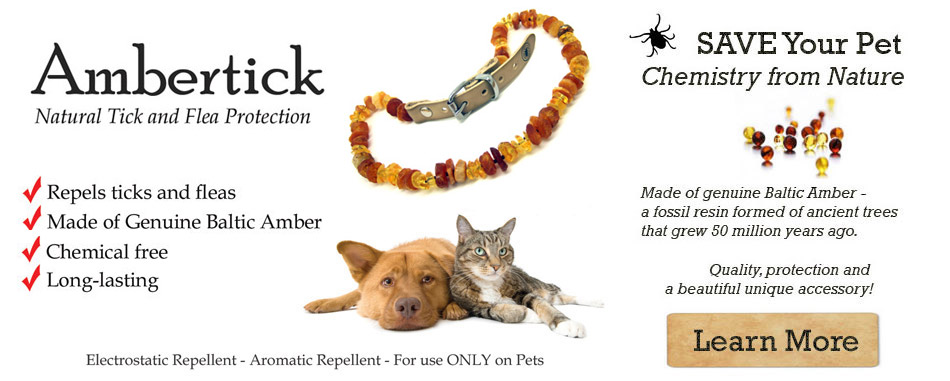 Tick and Flea Treatment, removal, protection for Dogs and Cats
