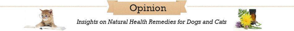 Opinion - Insights on Natural Health Remedies for Dogs and Cats